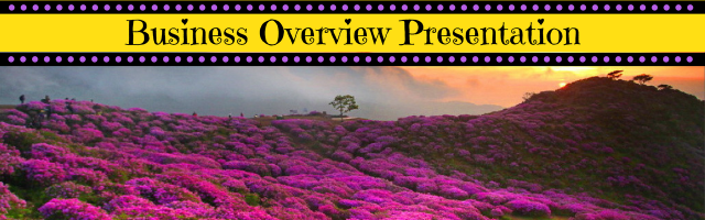 Business overview banner