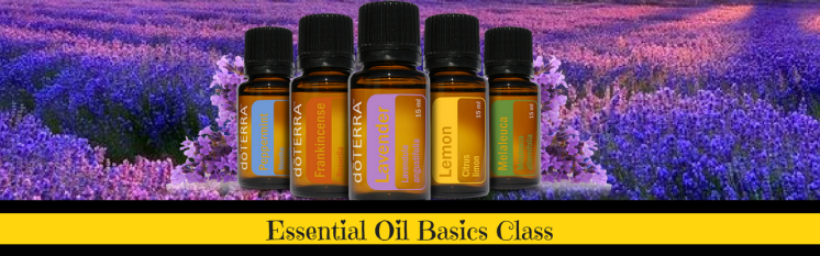 essential oil Basics banner